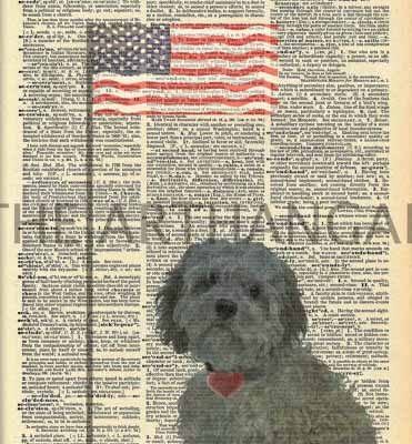 Dictionary Dog Silhouette of Cockapoo with flag